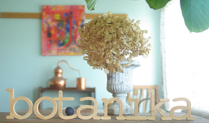 hair room botanika